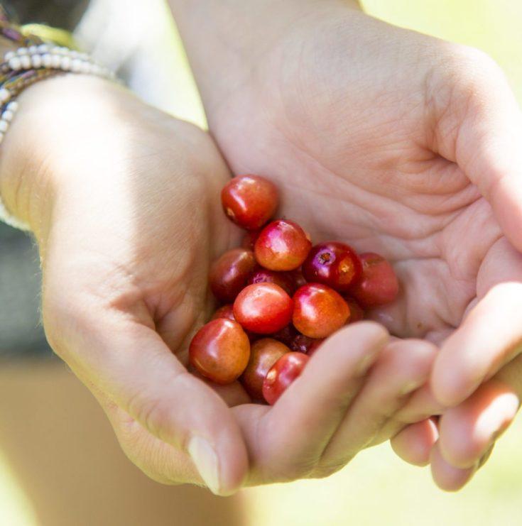 Cherry on!